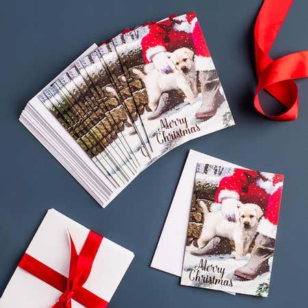 94307_EDG_Christmas_'Winter_Blush'_Cards_and_Envelopes___Set_of_16