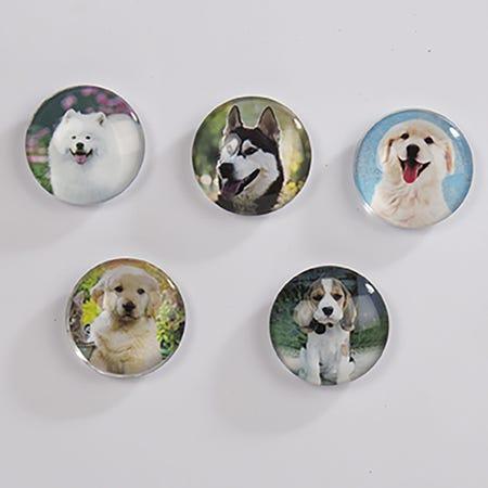 94890_Deco_Home_Adorable_'Dog'_Glass_Magnet__Asstd_
