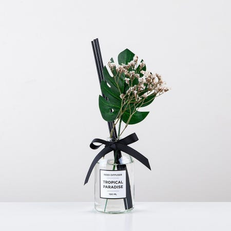 96820_KSP_Soleil_'Tropical_Paradise'_Reed_Diffuser__Clear