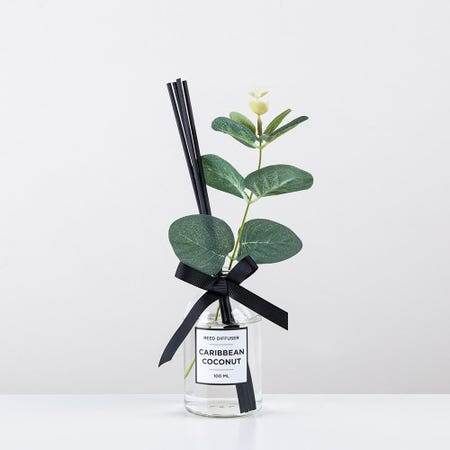96821_KSP_Soleil_'Carribean_Coconut'_Reed_Diffuser__Clear