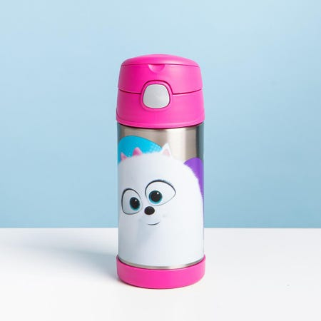 97004_Thermos_'Secret_Life_of_Pets'_Funtainer_Sport_Bottle_with_Straw